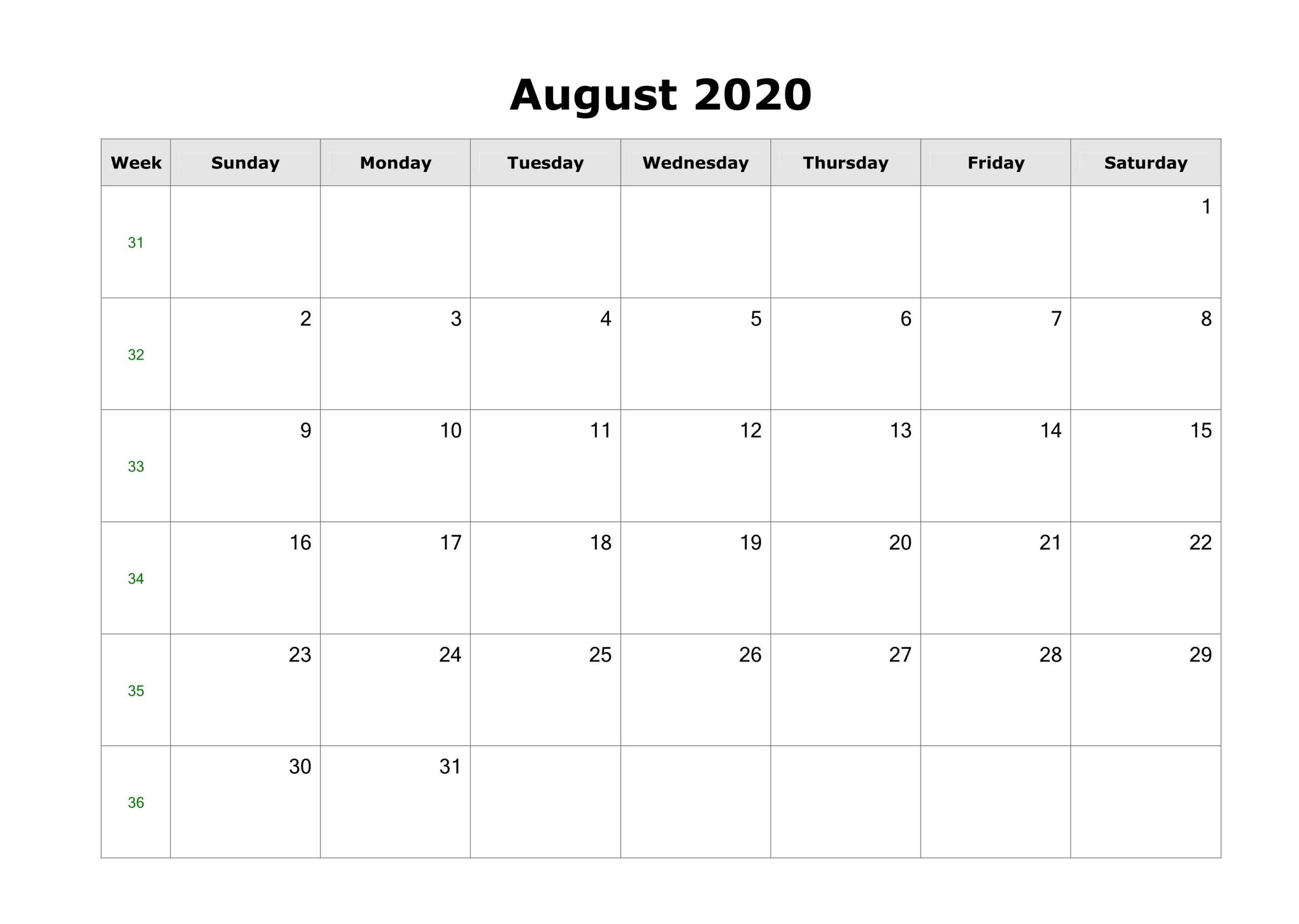 Blank August Calendar 2020