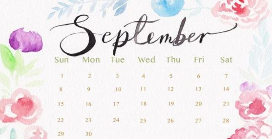 Floral September 2020 Calendar Cute