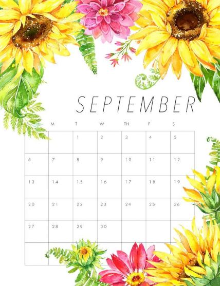 Floral September 2020 Calendar Wallpaper