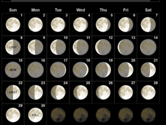 Full Moon Calendar November 2020