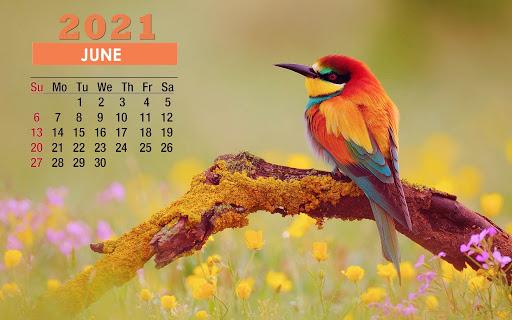June 2021 Desktop Calendar Wallpaper