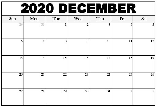 Blank December 2020 Fillable Calendar