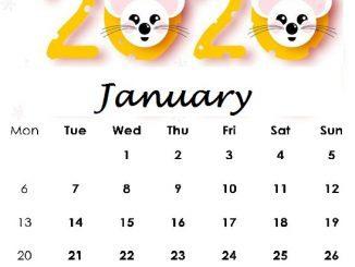 January 2020 Cute Calendar
