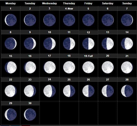 Moon Phases November 2021 Calendar